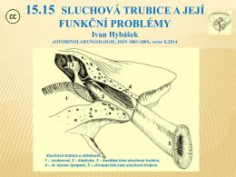 15.15 SLUCHOVÁ TRUBICE A JEJÍ FUNKČNÍ PROBLÉMY Ivan