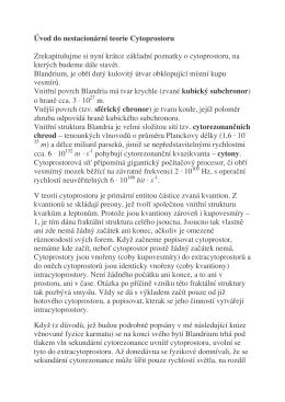 Kapitola 10 - Úvod do teorie Cytoprostoru