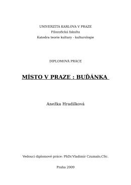 doc004-DiplomovaPraceBudanka.pdf
