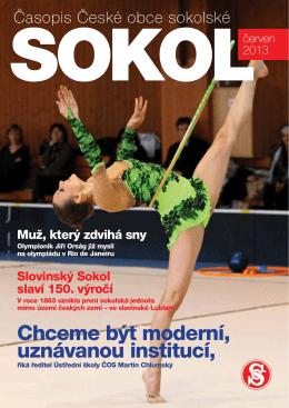 eSOKOL - číslo 06-2013