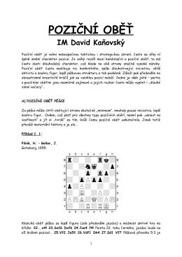 Poziční oběť (ve formátu pdf)