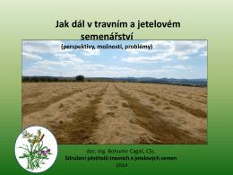 Aktuální situace v českém travním a jetelovém semenářství