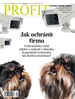 Jak ochránit firmu - Švehlík & Mikuláš