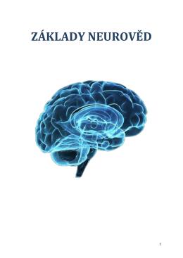 Skripta Základy neurověd