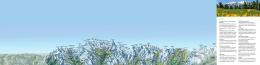 Aletschský ledovec / světové dědictví UNESCO Světové