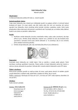 Navod Tulips .pdf