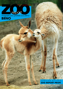 Zoo report 02/12.pdf