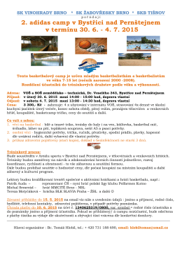 Basket-camp-2015