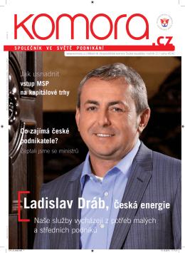 Ladislav Dráb, Česká energie - Hospodářská komora České republiky