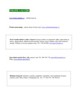 WEB_č 5 _12 _Terapie_a_služby