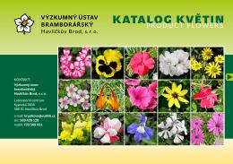 viz katalog květin zde