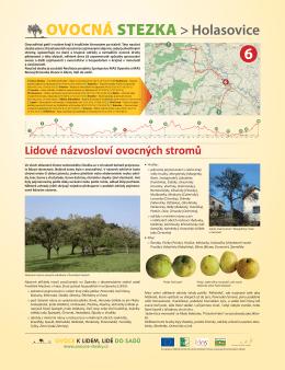 Lidové názvosloví ovocných stromů