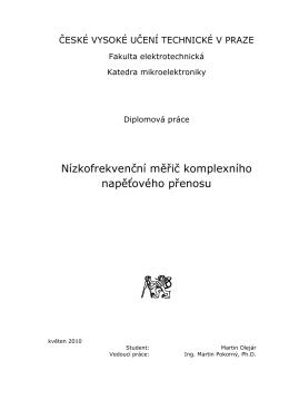 Diplomová práce ke stažení v PDF