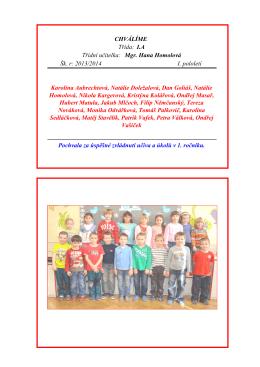 První pololetí školního roku 2013/2014