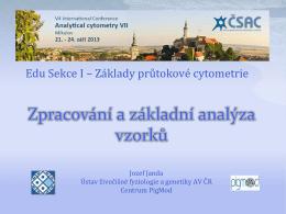 Zpracování a základní analýza vzorku