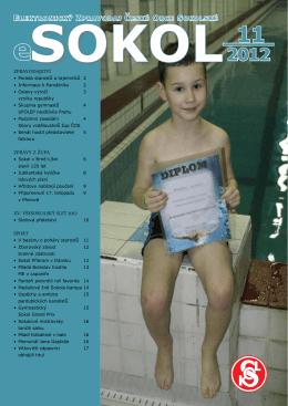 eSOKOL - číslo 11-2012 - TJ Sokol Železný Brod