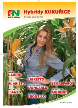 Katalog ve formátu PDF ke stažení zde.