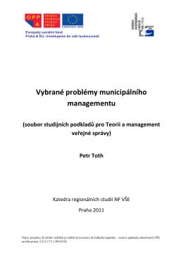 Vybrané problémy municipálního managementu