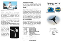 Základní informace o taekwondu Co potřebujete na trénink