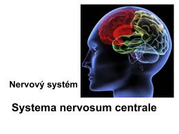anatomie_nerv.pdf7.67 MB