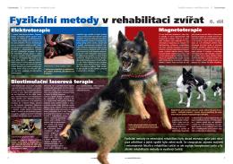 XX-XX_Fyzikální metody v rehabilitaci zvíat.indd
