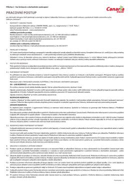 Příloha č. 1 Pracovní postup (pdf)