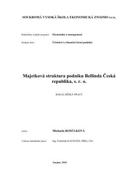 Majetková struktura podniku Bellinda Česká republika, sro