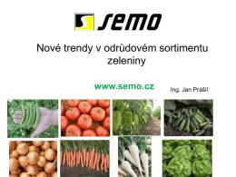 SEMO as