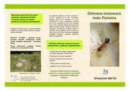 Ochrana nelesních druhů mravenců r. Formica