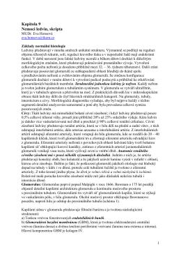 Kapitola 9 Nemoci ledvin, skripta