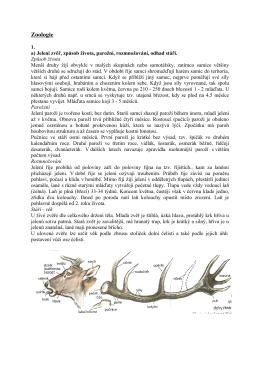 Zoologie - Myslivost
