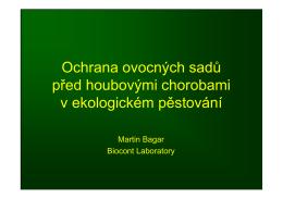 6 - Biosad