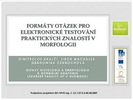 formáty otázek pro elektronické testování praktických