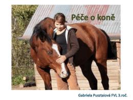 Péče o koně.pdf