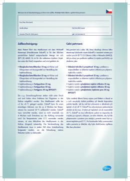 PFIZ_12_4626 Zollformular_DE-TSCHECH.indd