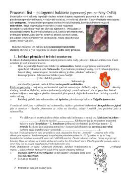 Pracovní list – patogenní bakterie