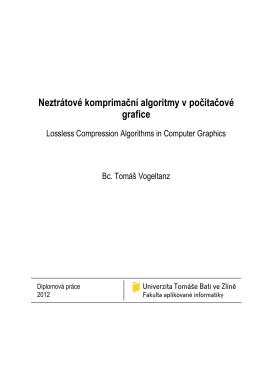 Diplomova Prace - Bc. Tomas Vogeltanz
