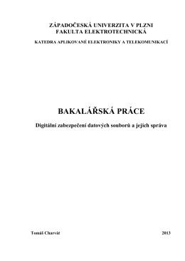 bakalarska prace.pdf - Západočeská univerzita v Plzni