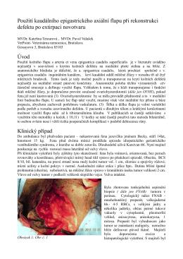 Použití kaudálního epigastrického axiální flapu při