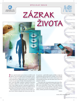 zázrak života - Scientific American