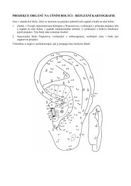 projekce orgánů na ušním boltci