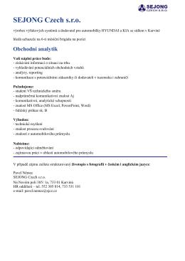 Obchodní analytik - SEJONG Czech, sro