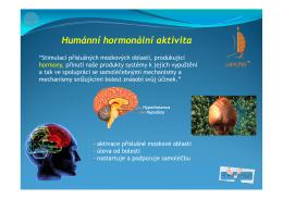 Informační katalog Lavylites