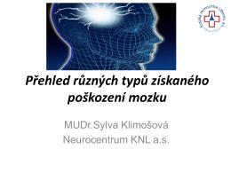 Přehled různých typů získaného poškození mozku.pdf