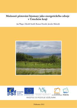 Možnosti pěstování biomasy jako energetického zdroje v