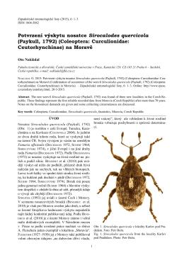Potvrzení výskytu nosatce Sirocalodes quercicola (Paykull, 1792