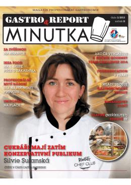 GR_M_2013_03_NAHLED_X.pdf