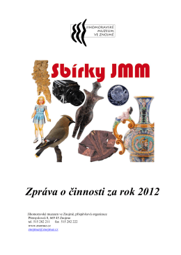 Zpráva o činnosti za rok 2012