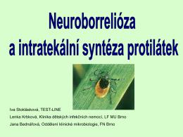 Neuroborrelióza a intratekalní syntéza protilátek Iva Stoklásková