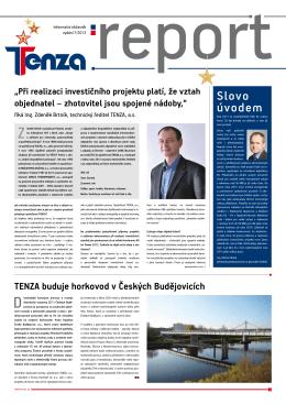 report - Tenza
